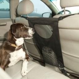como transportar meu cachorro no carro 6