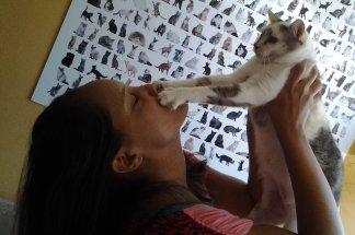 Uma pet sitter para gatos que seja confiável e bem treinada é MUITO melhor do que levar seu gato para um hotelzinho ou deixá-lo sozinho quando for viajar!
