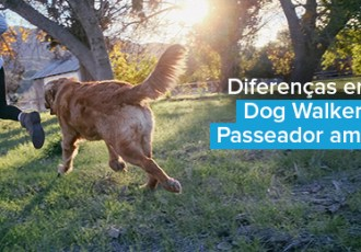 Diferença entre Dog Walker Profissional e Passeador Amador