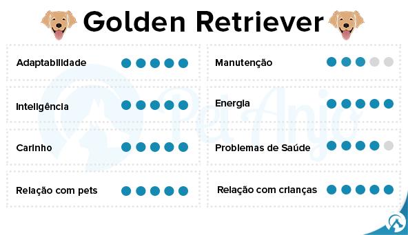 caracteristicas golden retriever