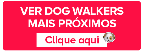 dog walkers proximos