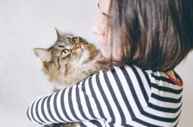 pet sitter cuidando de gato em casa