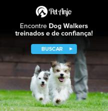 dog-walker-de-confiança-passeando-com-cachorros