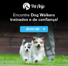 dog walker encontre