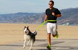 dog walker corre com cão