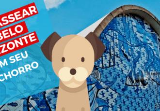 Dog walker em Belo Horizonte