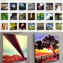 Instacanvas Turns Your Instagram Photos Into Sellable Wall Art