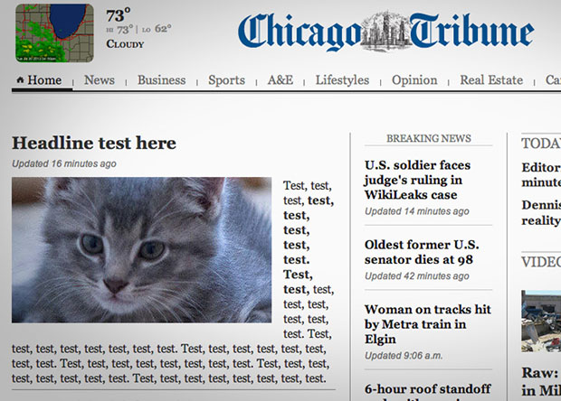 Chicago Tribune Accidentally Publishes a Placeholder Cat Photo on Front Page cattest