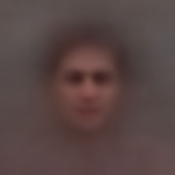 Averaged Portraits Created Using Faces Found in Popular Movies ssbkyh taxi driver copy