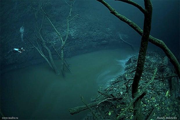 Mesmerizing Photos of Cenote Angelita, an Underwater River underwaterriver3
