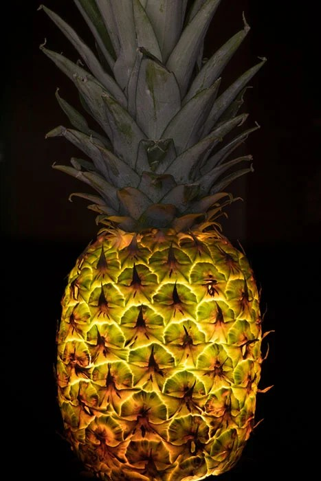 Photographer Makes Fruits and Vegetables Glow by Sticking