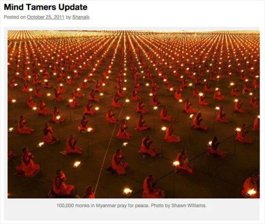 A 2011 appearance of Luke's photo on a Dharma teaching blog, joannefriday.com, with the incorrect Myanmar caption and credit to a different photographer.
