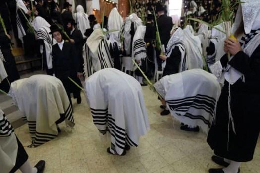 Hasidic Jews praying with four species during Sukkot.