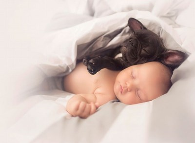 babyandbulldog2