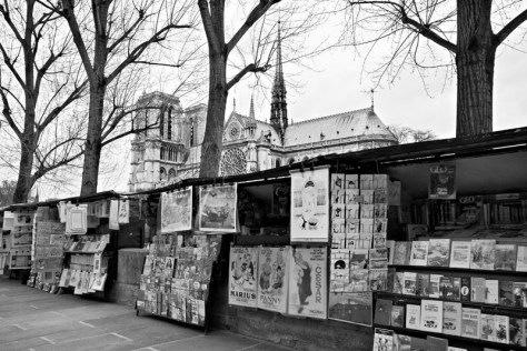 book-sellers-by-the-seine-paris