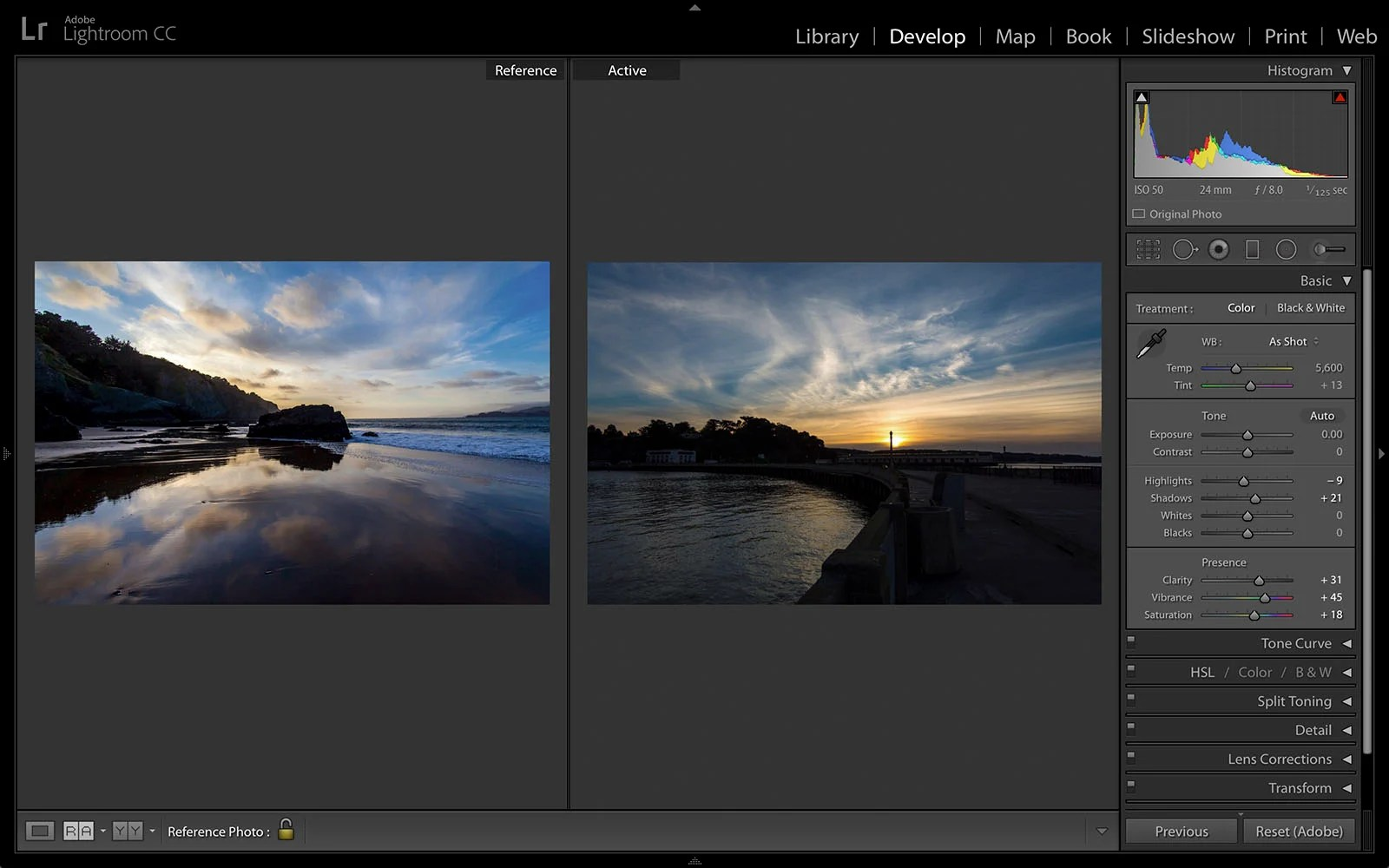 Lightroom Gets New Reference View for Comparing Photos