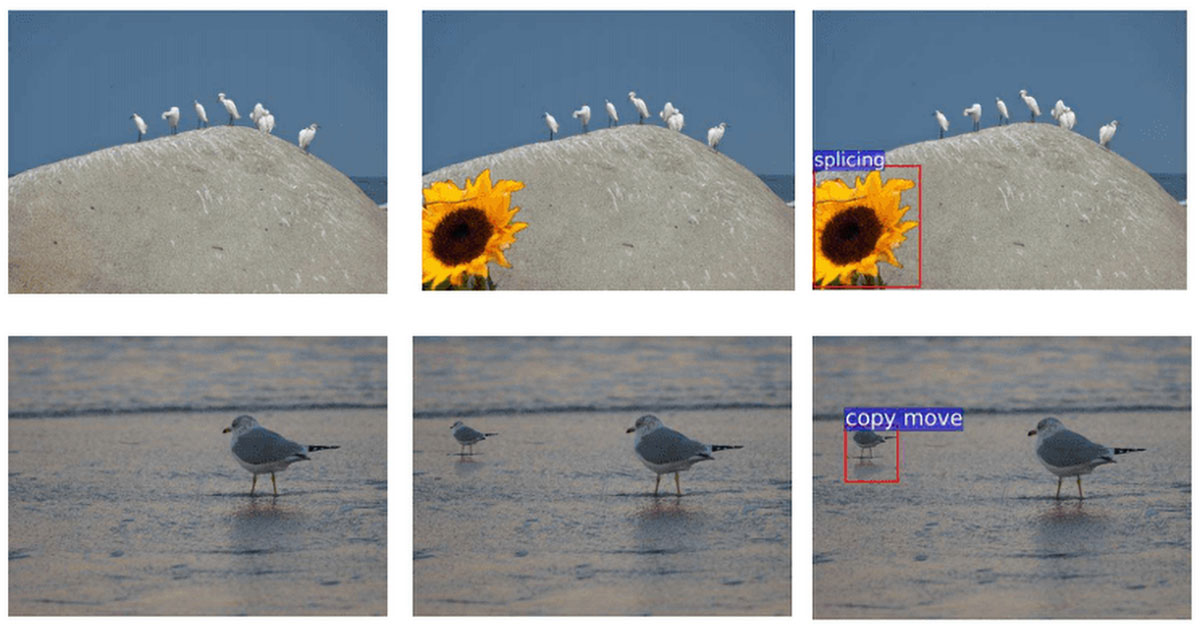 Adobe Using AI to Spot Photoshopped Photos