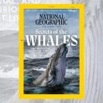 NatGeo sta fornendo modi per aiutare le creature e gli habitat minacciati