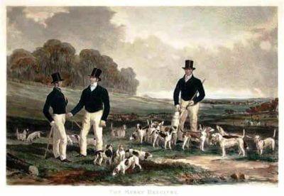beagle cachorro cacador