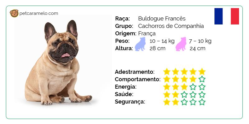bulldog frances preco