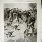 whippet na inglaterra 1912