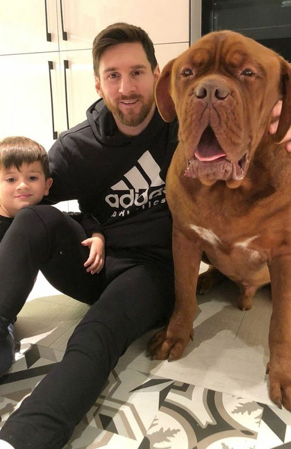 cachorro do messi