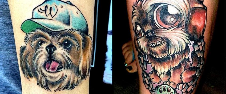 tatutagem-de-shih-tzu-colorida