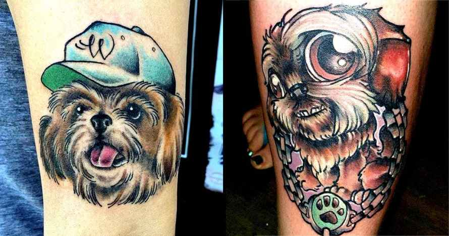 tatuagens de shihtzu