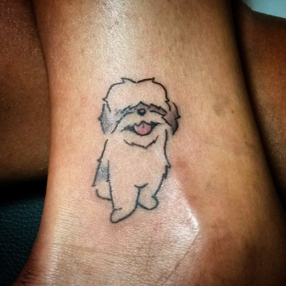 Shihtzu tatoo tatuagens