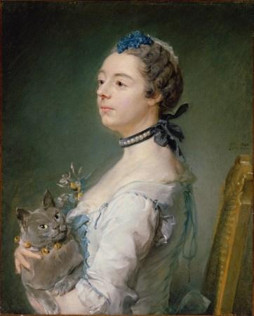 Gato Chartreux quadro