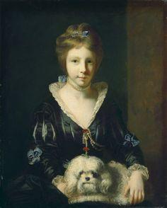 Bichon Havanes quadro com rainha