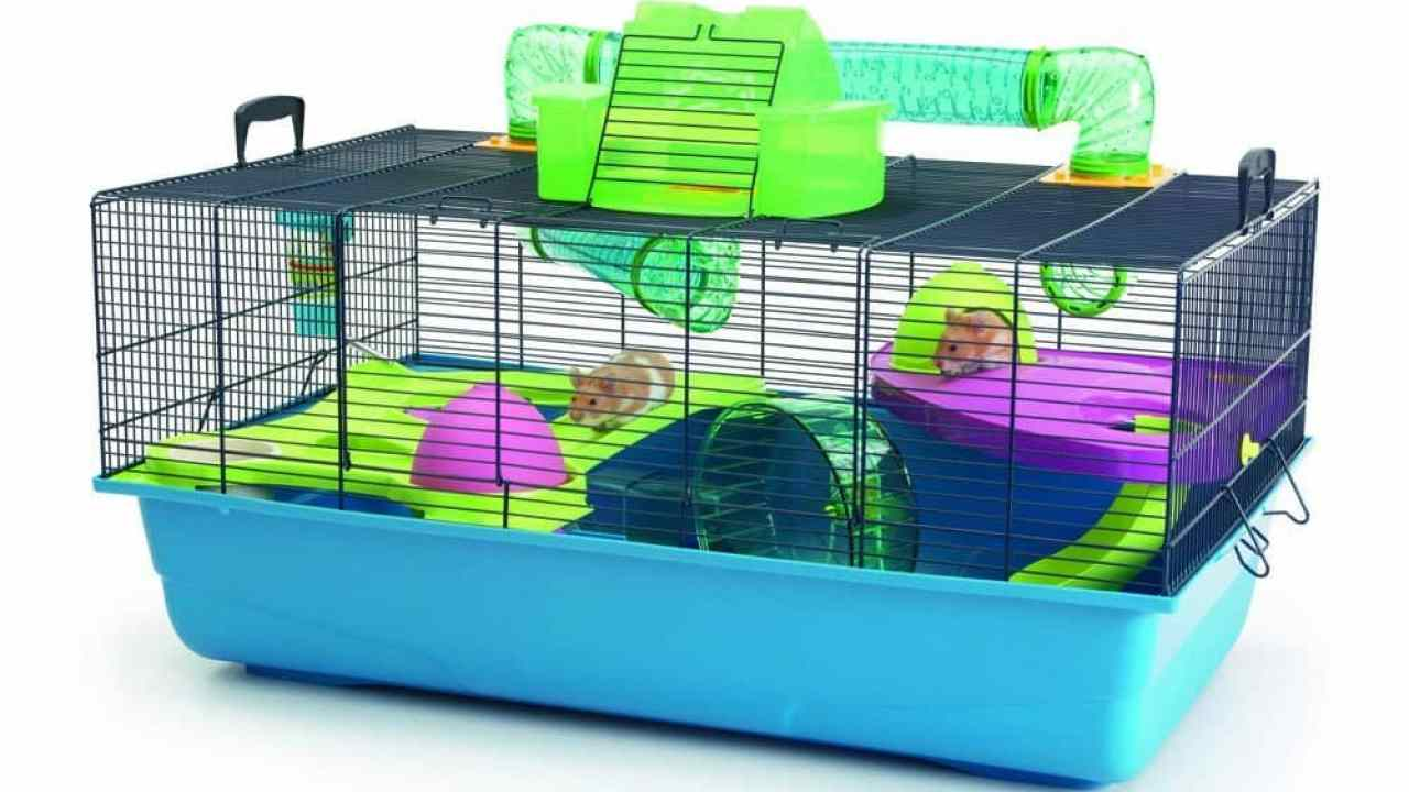 Different Types of Hamster Cages