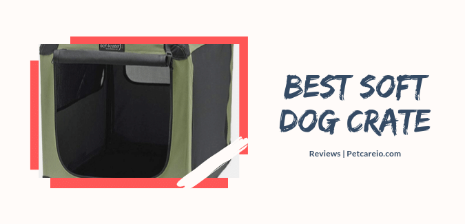 Best Soft Dog Crates – Ultimate Choices For Maximum Comfort!