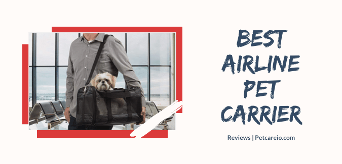 Best Airline Pet Carrier [Review & Guides]