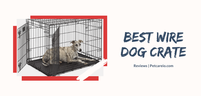 Best Wire Dog Crate – Metal Safe, Heavy Duty, and Affordable