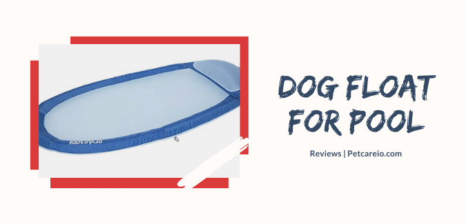 dog float for pool