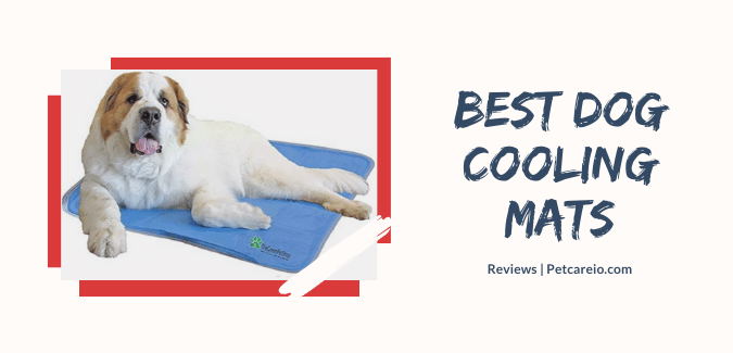 Best Dog Cooling Mats & Pads  – Hot Summer! Cool Your Dog!