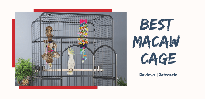 Best Macaw Cage [Review]
