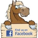 facebook-horse