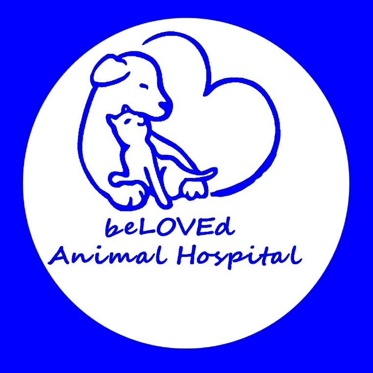 Beloved Animal Hospital2.jpg
