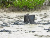 """During BirdLife Jamaica's trip to Portland Cottage, Clarendon last November, we found not much """"wet"""" in the wetlands - but plenty mud. And someone had simply stepped out of their water boots!"""