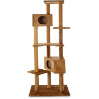 how to clean a carpet cat tree - Home The Honoroak