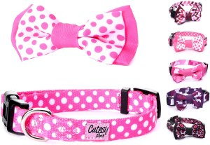 Cute Girl Dog Collars With Bows