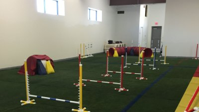 Obedience Course