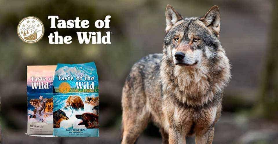 taste of wild perro