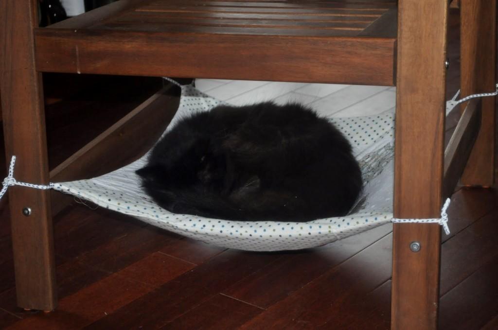 under chair cat hammock blue covers for weddings diy petdiys com