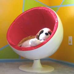 Diy Exercise Ball Chair Base Hanging Canada Dog - Petdiys.com