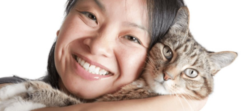 Dental care for Cats in Chandler, AZ