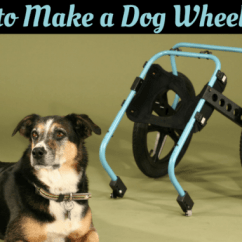Wheelchair Dog Chairs For Your Room How To Make A Own Diy