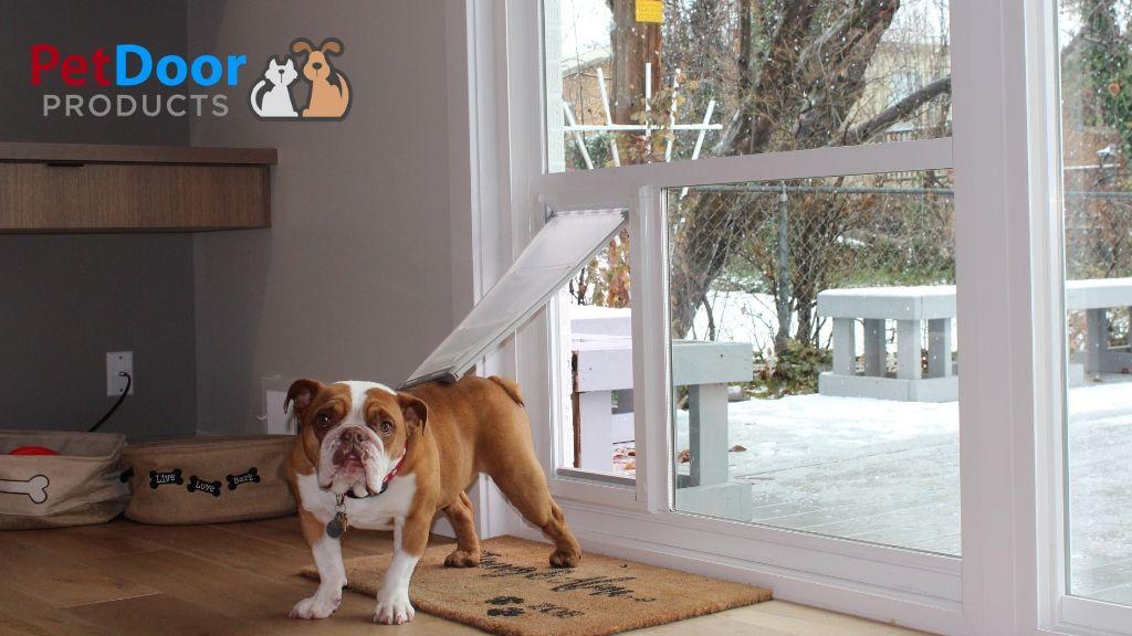 pet door for glass door